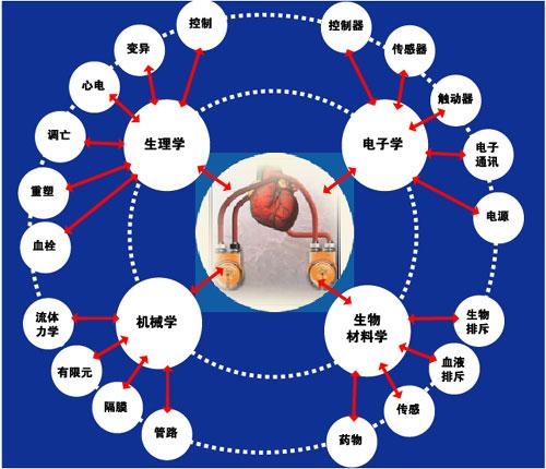 图1    心室辅助器械(VAD)的技术设计