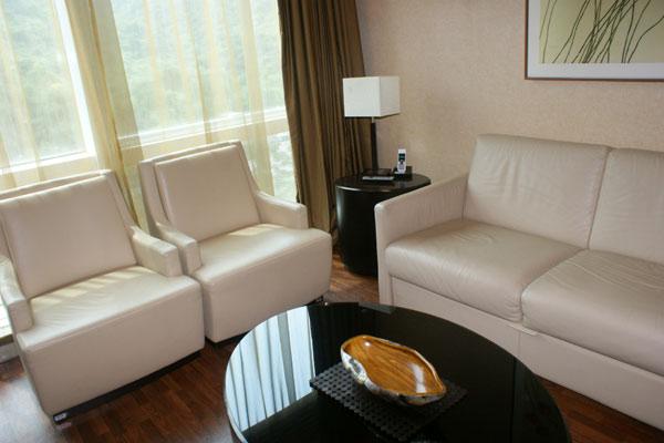 仁安医院VIP病房的会客厅。