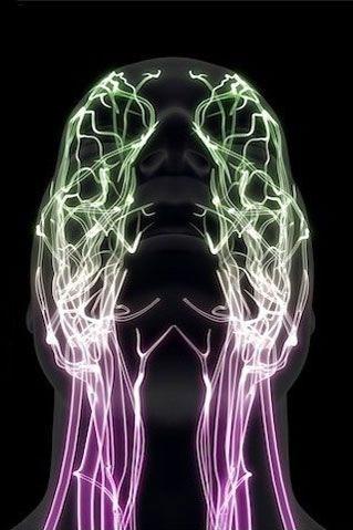 头部轮廓3D成像